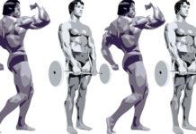 Arnold Schwarzenegger træning