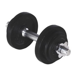10 kg jern håndvægt fra fitnessgruppen.dk